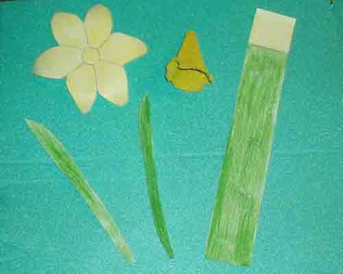 Daffodil_project_components