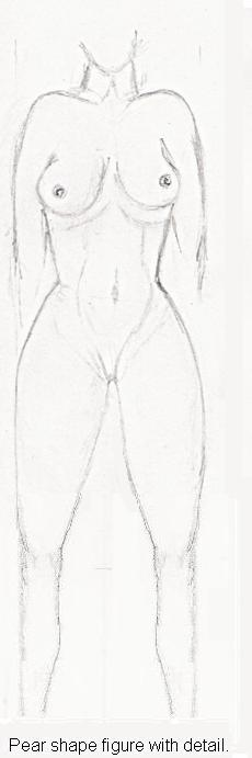 Pear shaped figure. The pear shape figure with detail
